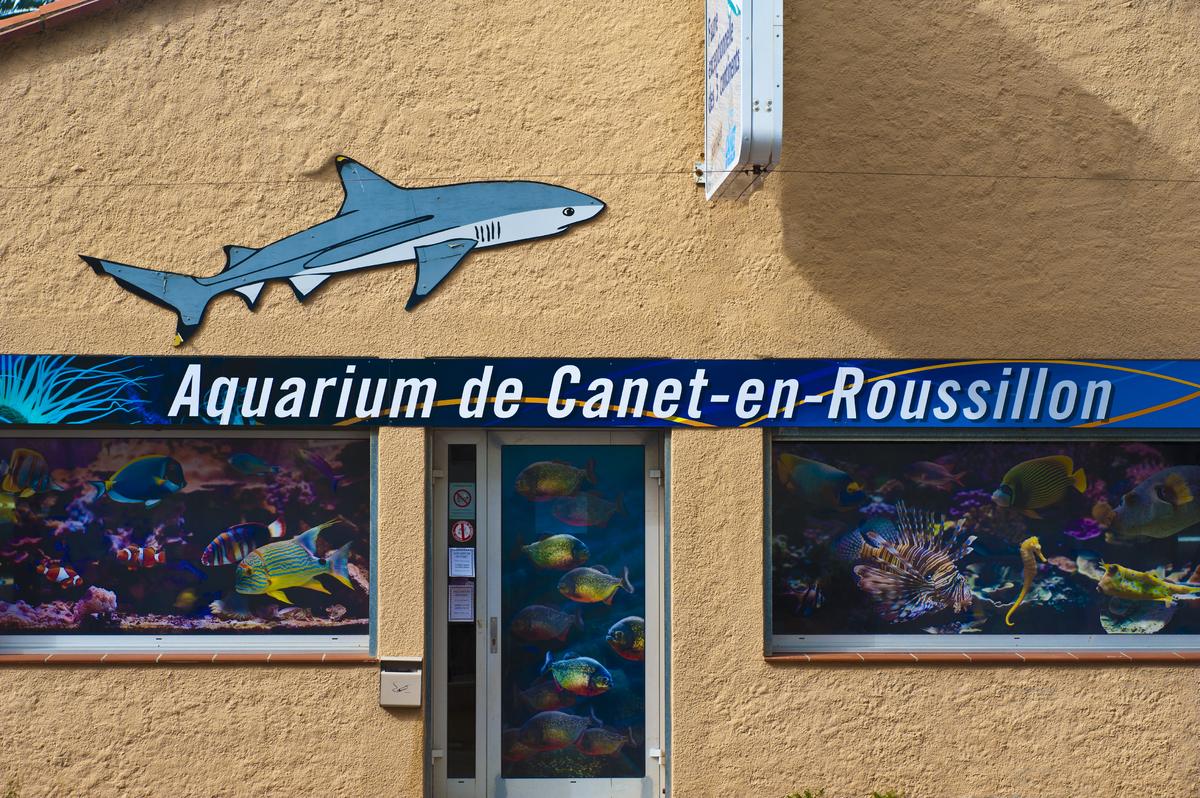 Canet en roussillon d couvrir son aquarium infos - Office du tourisme de canet en roussillon 66140 ...
